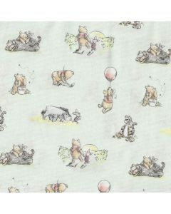 Winnie The Pooh Classic Storytime Friends in Mint